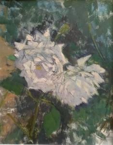 Curio Sabine Weiße Rosen